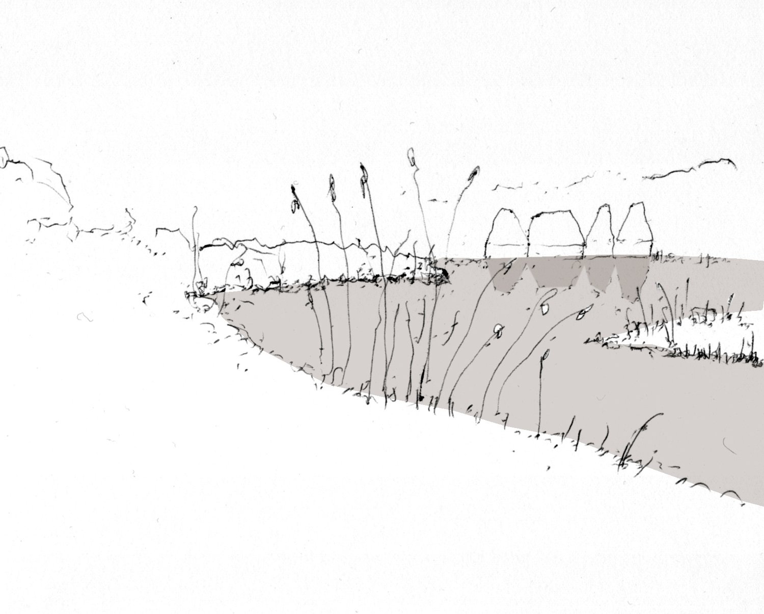 AKA_027_Brockholes_sketch_01.jpg